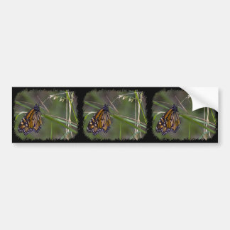 Monarchfalter im Gras Autoaufkleber