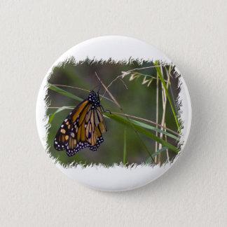 Monarchfalter im Gras Runder Button 5,7 Cm