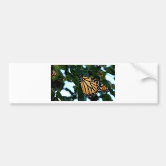 Monarchfalter in den Fliedern Autoaufkleber