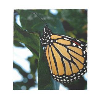 Monarchfalter in den Fliedern Notizblock