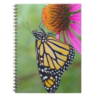 Monarchfalter-Notizbuch Notizblock