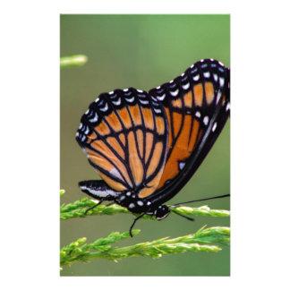 Monarchfalter-Schönheit Briefpapier