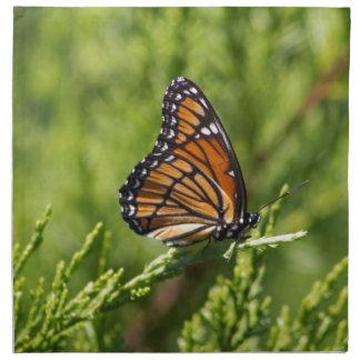 Monarchfalter-Schönheit Stoffserviette