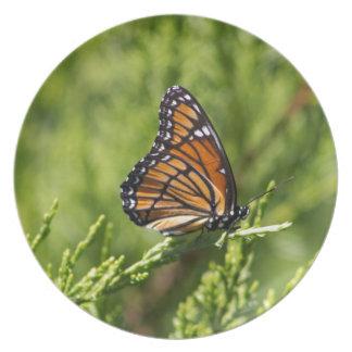 Monarchfalter-Schönheit Teller