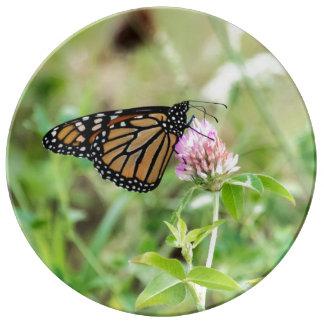 Monarchfalter Teller