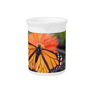 Monarchschmetterling auf orange Blume Getränke Pitcher