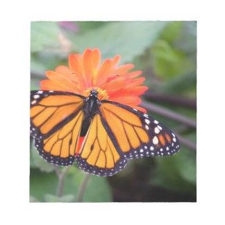 Monarchschmetterling auf orange Blume Notizblock