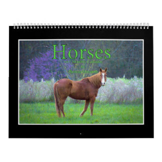 Monatskalender der Pferd2017 durch Thomas Minutolo Wandkalender