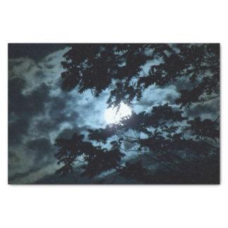 Mond belichtet die Nacht hinter Baumasten Seidenpapier
