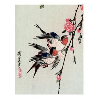 Mond-, Schwalben-und Pfirsich-Blüten-Postkarte Postkarte