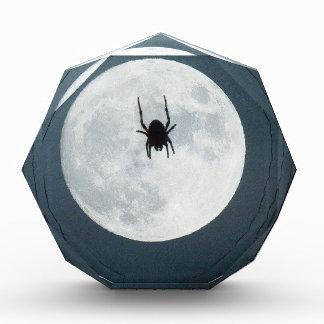 Mondspinne Auszeichnung