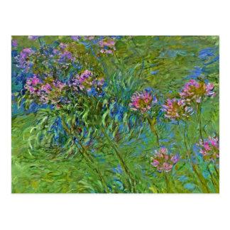 Monets Agapanthus-Blumen Postkarte