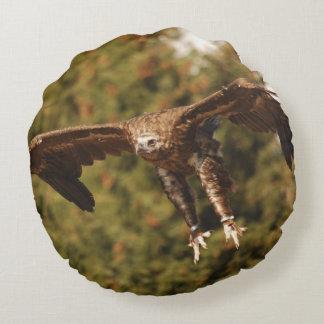 Monk Vulture Mönchsgeier / Foto Jean-Louis Glineur Rundes Kissen