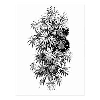 Monogramm S mit Palmetto-Blätter Postkarte