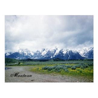 Montana-Hügel-Landschaftsschöne Fünfzigerjahre Postkarte