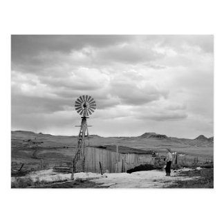 Montana-Schafe Ranch, 1942 Postkarte