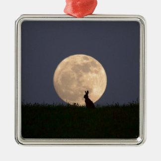 Moongazer.JPG Quadratisches Silberfarbenes Ornament
