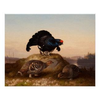 Moorhühner 1870 Ferdinands von Wright Orrar Poster