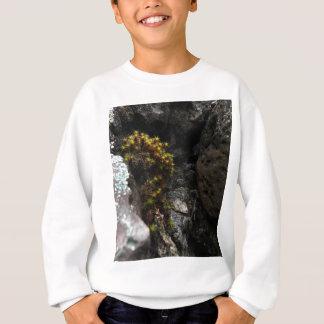 Moos 1.jpg sweatshirt