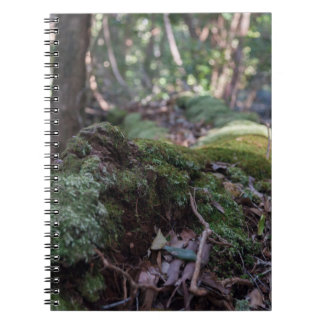 Moos bedeckte gefallenen Baum in einem Spiral Notizblock