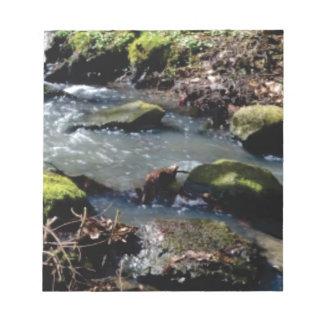 Moos in The Creek Notizblock
