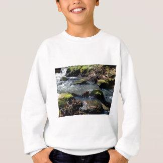 Moos in The Creek Sweatshirt