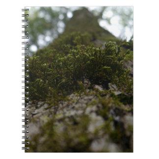 Moos-Notizbuch Spiral Notizblock