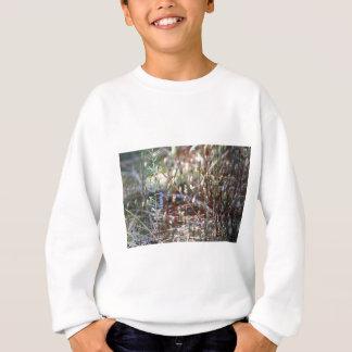 Moos Sporophyts Sweatshirt