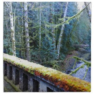 moosige Brücken nahe See-sichelförmigem Häuschen Stoffserviette