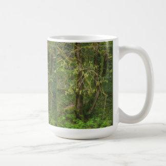 Moosiger großer Blatt-Ahorn Oregons in der Blume Kaffeetasse