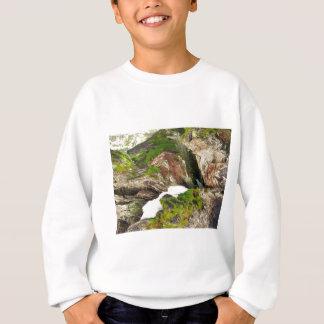 Moosiger Stumpf Sweatshirt