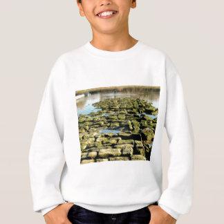 Moosplasterungen Sweatshirt