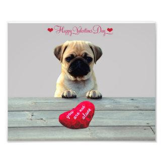 Mops, der glücklichen Fotodruck des Valentines