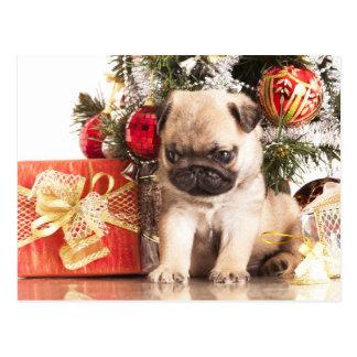 Mops- und Weihnachtsgeschenke Postkarte