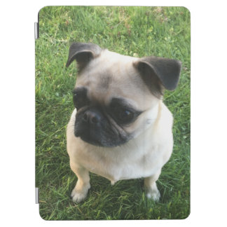 Mops-Welpe iPad Air Cover