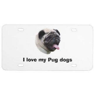 Mopshundehaustier-Fotoporträt US Nummernschild