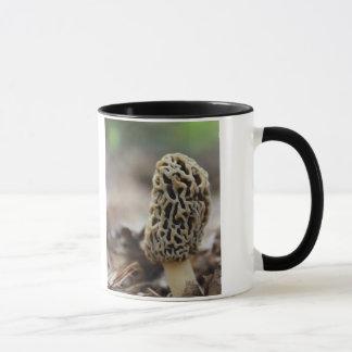 Moralische Pilz-Tasse Tasse