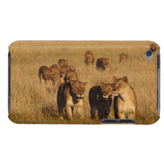 Moremi Tier-Reserve, Botswana iPod Touch Case