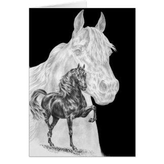 Morgan-Pferdegeist, der durch Kelli Schwan Karte