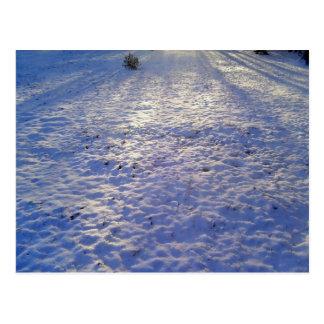 Morgen-Schneefälle Postkarte