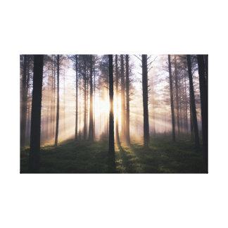 Morgenlicht Leinwanddruck