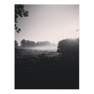 Morgennebel und niedrige Sonne auf dem Feld wenn Postkarte