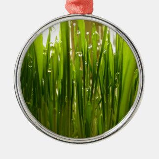 Morgentau Silbernes Ornament