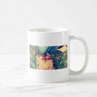 Morkie Welpenspielen Kaffeetasse