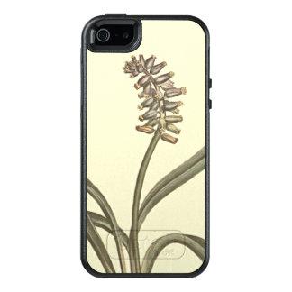 Moschus-Trauben-Hyazinthen-botanische Illustration OtterBox iPhone 5/5s/SE Hülle