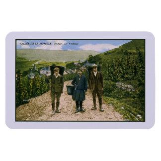 Mosel-Weinernte 1900 Schengen Luxemburg Magnet