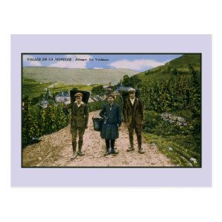 Mosel-Weinernte 1900 Schengen Luxemburg Postkarte