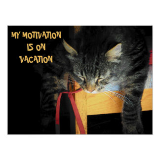 Motivationsferien Katze Meme Poster