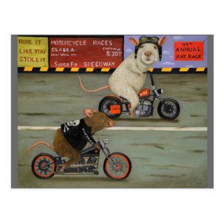 Motorrad-Rennen des Ratten-Rennen-3 Postkarte