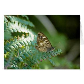 Motte auf einer Pflanze Karte